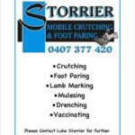 Storrier Mobile Crutching & Sheep Services